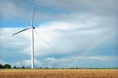 Wind turbine on crop field with blue sky and rainbow.  (Renewable Energy).