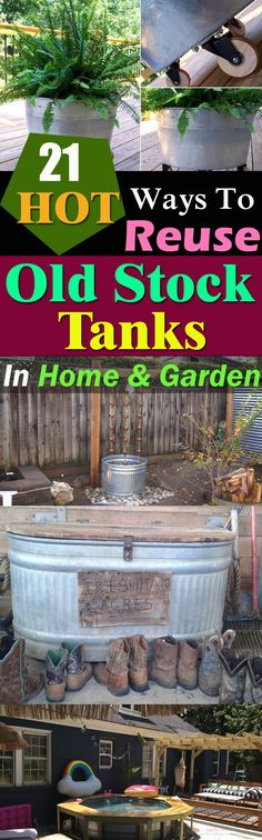 Super practical DIY stock tank ideas for your home and garden. Convert and repurpose them into somet Galvanized Stock Tank, Galvanized Tub, How To Make Stock, Plant Troughs, Reuse, Repurpose, Goldfish Pond, Farm Lifestyle, Backyard Plan