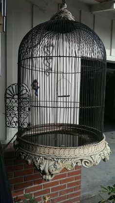 ANTIQUE BIRD CAGE                                                       …