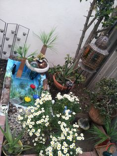 """I dug out my in-ground brick planter to create my garden turtle pond (when my boyfriend & his daughter surprisingly brought home a turtle they """"found""""). I used a shower curtain I had sitting in the garage forever w/ some dollar store vases, had an extra bag of rocks that I put in my empty bird bath to create a fountain. And Voila - Turtle habitat!!"""