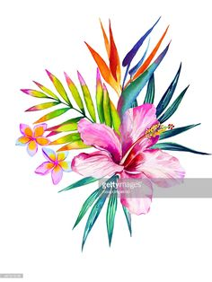Illustration : bouquet de fleurs tropicales