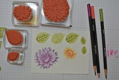 Use the new Watercolor Pencils to add color and variation to stamped images. Watercolor Pencils Techniques, Watercolor Pencil Art, Colored Pencil Techniques, Watercolor Cards, Card Making Techniques, Paint Techniques, Drawing Techniques, Colouring Techniques, Card Tutorials