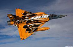 Mirage 2000 tiger meet 2010
