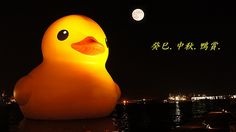 @ Chinese Moon Festival