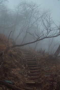 "r2–d2: "" "" Misty Stairs "" """