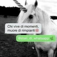 Nuovo stato#stati_whatsapp