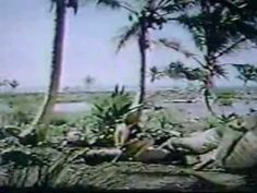 The Cay (1974) Part 5/8