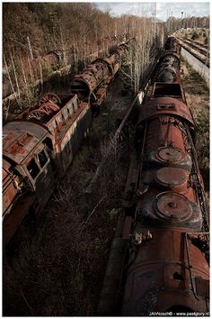 LOST LOCOMOTIVES DDRDeep inside the former DDR on a abandoned railtrack there are standing some 30 rusty steam locomotives [Dampfloks]. Walking between these steel giants is simply stunning and impressive. So much old steel with a wide variety of very f& Abandoned Train, Abandoned Buildings, Abandoned Houses, Abandoned Places, Train Car, Train Tracks, Magic Places, Old Trains, Steam Locomotive