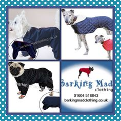 Quality dog clothing and accessories @BarkingMadDogClo