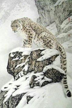 "The IUCN lists the snow leopard as ""endangered""."