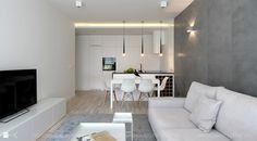 Salon styl Minimalistyczny - zdjęcie od TK Architekci - Salon - Styl Minimalistyczny - TK Architekci