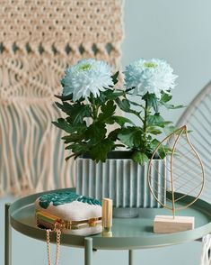 You never knew there are chrysanthemum flowers in the shades of blue or even in Unicorn colours? Chrysanne® has it all! Visit www.chrysanne.info for inspiration Chrysanthemum Flower, Shades Of Blue, Unicorn, Colours, Table Decorations, Flowers, How To Make, Inspiration, Home Decor