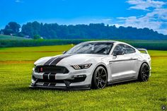 2015 Ford Mustang Shelby GT350 R