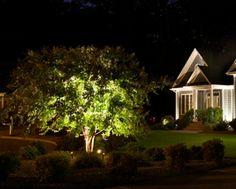 52 Best Landscape Lighting Images In 2016 Landscape