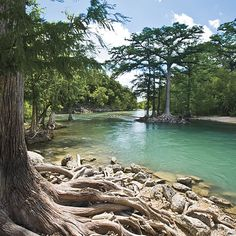Floating down the Guadalupe River in Texas -- very beautiful