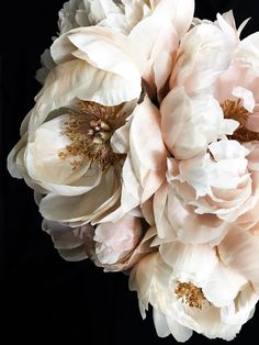 "Peonies Discover Christina Fluegge ""Peony Photographic Print Peony 62 Photographic print by California based photographer Christina Fluegge. Paper print on Hahnemuhle Photo Rag Paper. All photographic prints are limited edition pieces. Peony Flower, Flower Art, Cactus Flower, Art Flowers, Paper Flowers, Peonies Wallpaper, Pink Flowers, Beautiful Flowers, Exotic Flowers"