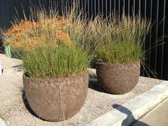 Batur pot van domani groenseizoen tuinenontwerpstudio