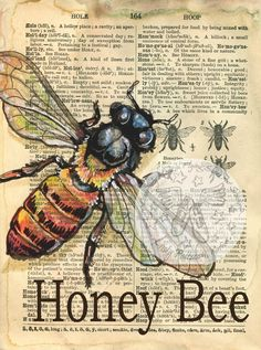 6 x 8 Print of Original, Mixed Media Drawing on an Distressed, Dictionary Page This drawing of a Honey Bee is drawn in sepia ink and created Honey Bee Drawing, Etiquette Vintage, Newspaper Art, Book Page Art, Arte Obscura, Arte Sketchbook, Dictionary Art, Bee Art, Bees Knees