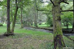 Vrelo Bosna Parkı - Saraybosna Saraybosna'nın Ilıja bölgesinde yer alan Vrelo Bosna Parkı, Iğman dağlarının eteklerinden akan pınar və nehirlerle her mevsim ayrı bir güzellik sunuyor. Fotoğrafı gönderen: Ramil Rzayev
