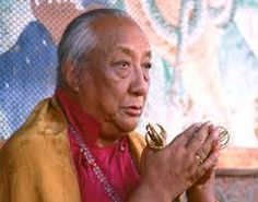 """""""Mastery of the mind is achieved through constant awareness of all your thoughts and actions. Check your mind over and over again, and as soon as negative thoughts arise, remedy them with the appropriate antidotes."""" ~ H.H. Dilgo Khyentse Rinpoche"""
