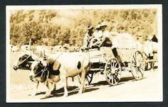 1920's DEADWOOD South Dakota WILD WEST, Rodeo Real Photo Postcard