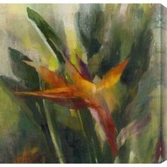 """Gallery Direct Bird of Paradise II by Allyson Krowitz Painting Print on Canvas Size: 24"""" H x 24"""" W"""