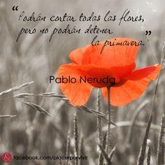 """""""Podrán cortar todas las flores, pero no podrán detener la primavera."""" Pablo Neruda #frase"""