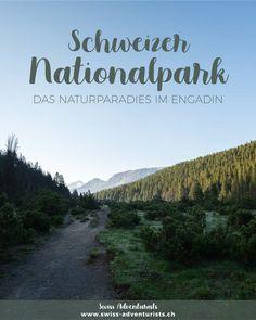 Wandern im Schweizer Nationalpark - das ist Natur pur! Jetzt neu auf unserem Blog :-)  #natur #wandern #ausflugsziel #sommer #herbst #swissalps #schweiz #graubünden #engadin #switzerland #reiseinspiration #reiseblog #travelcouple #alpen #mountains #europe #nature #naturelovers #reiseblogger_de #berge #heimat #destination_switzerland #wochenende #wandertipps #wanderlust #ausflugstipp #outdoors Wanderlust, Mountains, Nature, Travel, Nature Reserve, Swiss Guard, Road Trip Destinations, National Forest, Viajes