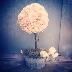 SUCH a beautiful centerpiece for a feminine wedding.  Pink carnations topiary pink and white wedding feminine