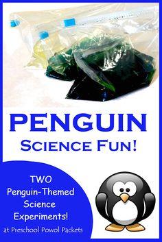 The perfect penguin science experiment! - - The perfect penguin science experiment! Science Experiments For Preschoolers, Animal Science, Kindergarten Science, Science For Kids, Science Activities, Science Projects, Winter Activities, Preschool Winter, Science Fun