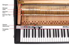 No matter what condition you find an old Fender Rhodes in, you can restore it to new condition with Vintage Vibe Parts!