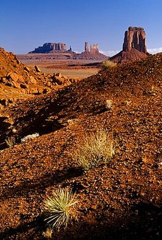 Monument Valley Navajo Tribal Park, Arizona, United States Of America