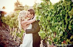 Orfila-Winery-Wedding-4.jpg (1600×1044)