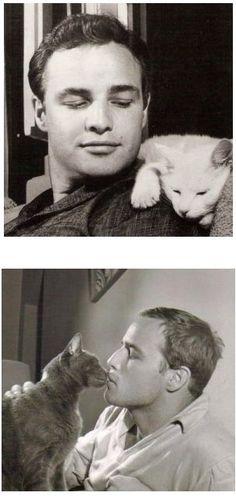 Actor Marlon Brando & cats