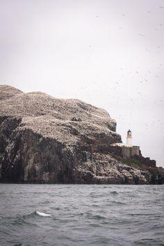 Bass Rock off the coast of Scotland.