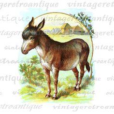 Printable Digital Donkey Download Color by VintageRetroAntique