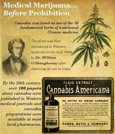 History of medical marijuana