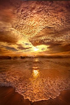 ~~In a Moment or Two   golden bronze sunrise on the shore of Lake Michigan, Oak Creek, Wisconsin   by Phil Koch~~