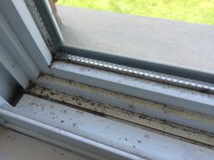 Mold and dirt after the winter in my window sills 👎😳 Chalk Paint, Stairs, Windows, Winter, Projects, Painting, Home Decor, Ladders, Winter Time