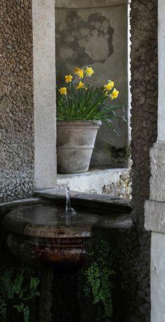 Villa d'Este (villa in Tivoli) Tivoli Italy, Spring Ahead, Italian Home, Garden Park, Old World Style, Secret Places, Love People, Dream Garden, Container Gardening