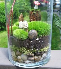 Layers of materials in the bottle terrarium by hester