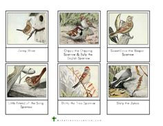 Meet Six of Our Feathered Friends This Montessori resource sheet features six characters from The Burgess Bird Book for Children by Thornton W. Burgess. The birds highlighted include the following: Jenny Wren Chippy the Chipping Sparrow & Bully the English Sparrow SweetVoice the Vesper Sparrow Little Friend of the Song Sparrow Dotty the Tree Sparrow Slaty the Junco Age: Any Focus: Birds, Burgess Bird Book Theme: Birds