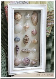 Cute shadow box idea - filled with shells, starfish, photos and other things. Having various sizes all made up differently. You can use a white or black frame