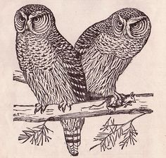 owls from 'Light On The Child's Path' (1918) by William A. Bixler