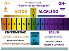 Acidez y Alcalinidad: Entrevista al Dr  Alberto Martí Bosch