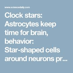 Clock stars: Astrocytes keep time for brain, behavior: Star-shaped cells around neurons prove to be surprisingly important players in body's clock -- ScienceDaily