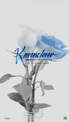 Floral Ravenclaw Aesthetics Phone Wallpaper Background | Collab by KAESPO + MorningDesigns