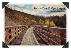 Join Doug & Shannon as they hit the tracks up at Myra Canyon in Kelowna, British Columbia. 7 km of tunnels, train trestles and breath taking views! British Columbia, Railroad Tracks, Trek, Hiking, Walks, Trekking, Hill Walking, Train Tracks