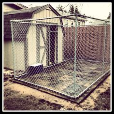 These folks added patio blocks to a pre-built shed with chain link fence for their dog kennel. Kennel Floor is an option that cleans easily, drains well and comfortable for your dog to lie on. Dog Kennel Designs, Kennel Ideas, Pre Built Sheds, Dog Boarding Kennels, Dog Kennels, Outdoor Dog, Indoor Outdoor, Dog Kennel Flooring, Dog Enclosures
