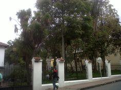 Jardín del Museo de la Independencia, Bogotá.